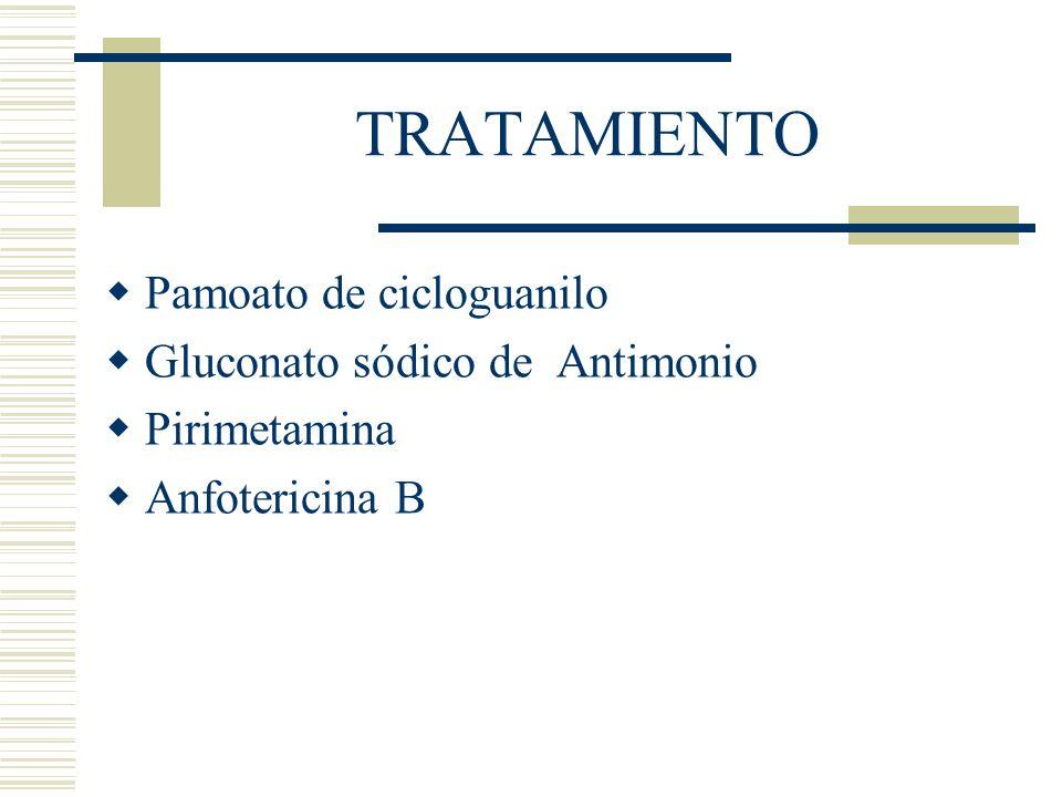 TRATAMIENTO Pamoato de cicloguanilo Gluconato sódico de Antimonio Pirimetamina Anfotericina B