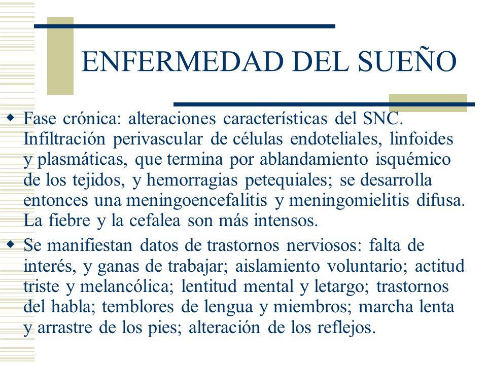 ENFERMEDAD DEL SUEÑO Fase crónica: alteraciones características del SNC.