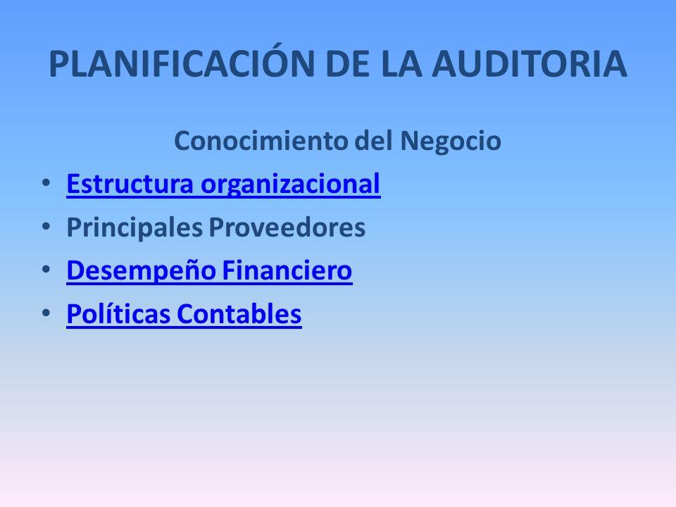 Conocimiento del Negocio Estructura organizacional Principales Proveedores Desempeño Financiero Políticas Contables PLANIFICACIÓN DE LA AUDITORIA