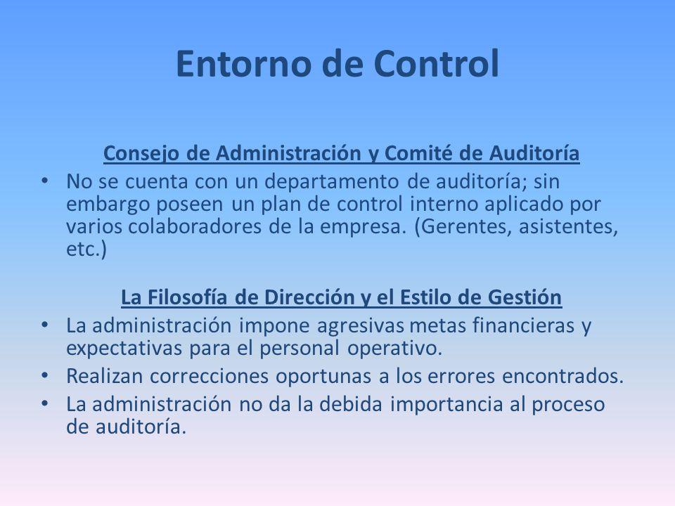 Entorno de Control Consejo de Administración y Comité de Auditoría No se cuenta con un departamento de auditoría; sin embargo poseen un plan de contro
