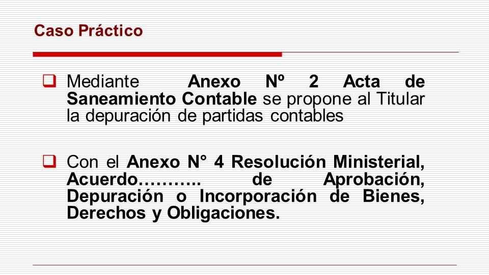 Mediante Anexo Nº 2 Acta de Saneamiento Contable se propone al Titular la depuración de partidas contables Con el Anexo N° 4 Resolución Ministerial, A