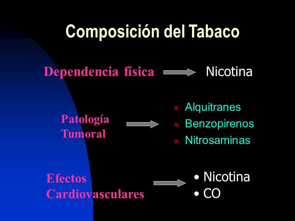 Cerca de Cerca de 4.000 sustancias Nicotina Alquitranes, benzopirenos, nitrosaminas Monóxido de Carbono (CO) Composición del Tabaco