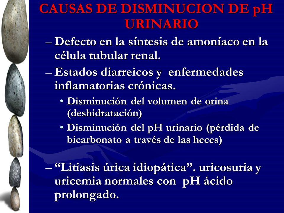 CAUSAS DE DISMINUCION DE pH URINARIO –Defecto en la síntesis de amoníaco en la célula tubular renal. –Estados diarreicos y enfermedades inflamatorias