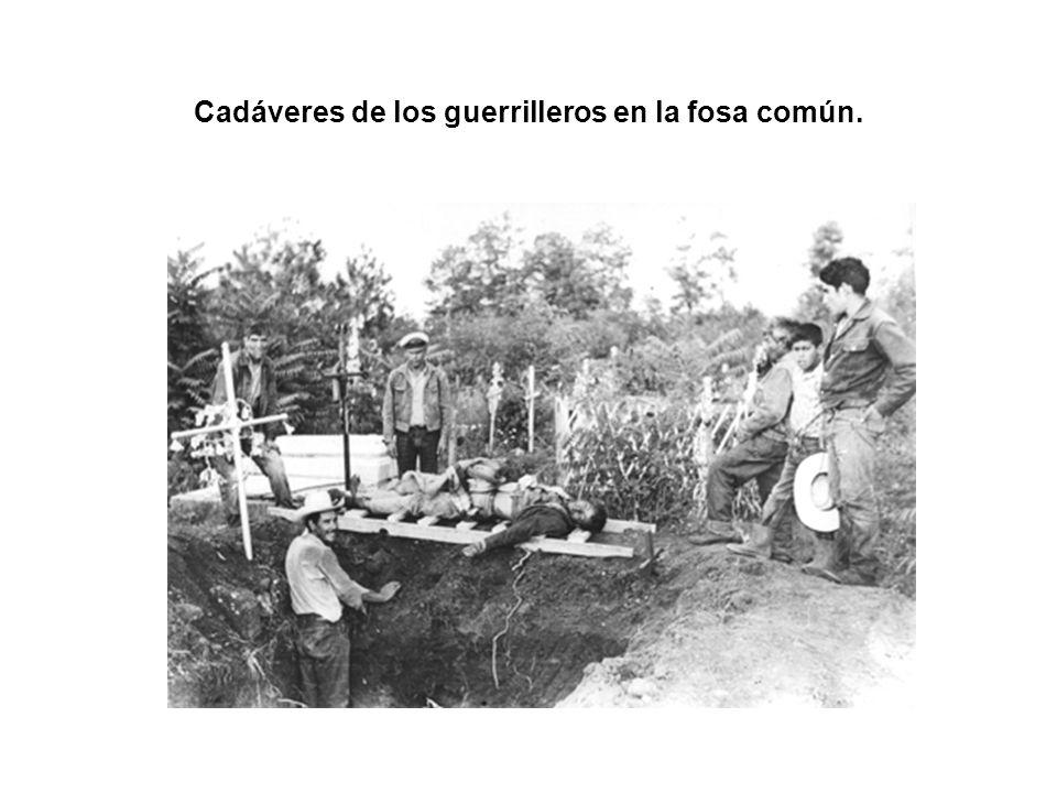 Cadáveres de los guerrilleros en la fosa común.