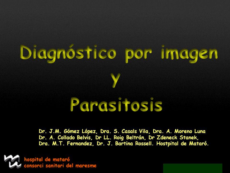 Dr. J.M. Gómez López, Dra. S. Casals Vila, Dra. A. Moreno Luna Dr. A. Collado Belvis, Dr LL. Roig Beltrán, Dr Zdeneck Stanek, Dra. M.T. Fernandez, Dr.
