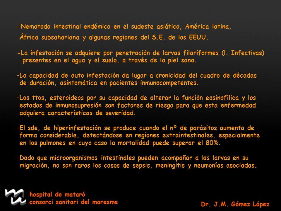 -Nematodo intestinal endémico en el sudeste asiático, América latina, África subsahariana y algunas regiones del S.E, de los EEUU. -La infestación se