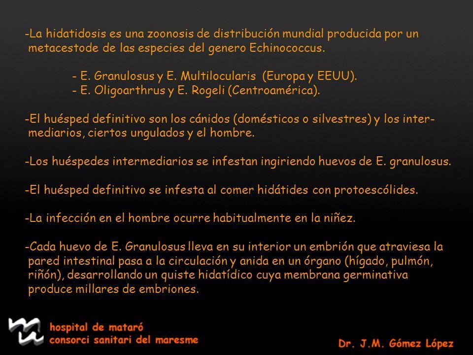 -La hidatidosis es una zoonosis de distribución mundial producida por un metacestode de las especies del genero Echinococcus. - E. Granulosus y E. Mul