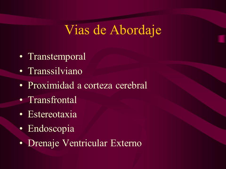 Vias de Abordaje Transtemporal Transsilviano Proximidad a corteza cerebral Transfrontal Estereotaxia Endoscopia Drenaje Ventricular Externo