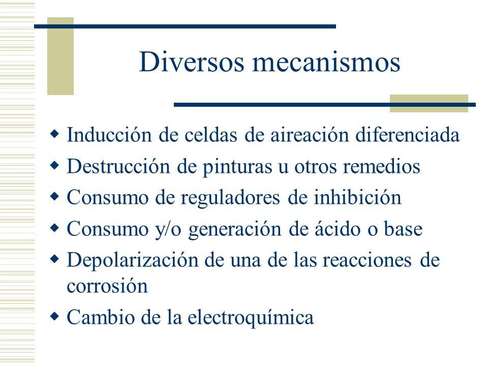 Corróen metales La observación de metales ha mostrado que las bacterias están copiosamente presentes Las medidas remediales pueden ser aniquiladores de bacterias pero tienden a ser mas bien bacteriostáticas La corrosión mediada por bacterias ocurre por las características de su modo de vida