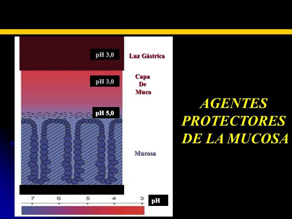 TERAPIA FARMACOLÓGICA AGENTESPROTECTORES DE LA MUCOSA Luz Gástrica CapaDeMuco Mucosa pH 5,0 pH 3,0 pH