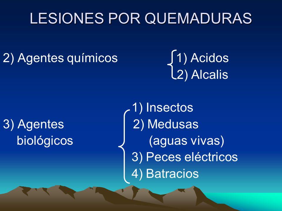 LESIONES POR QUEMADURAS 2) Agentes químicos 1) Acidos 2) Alcalis 1) Insectos 3) Agentes 2) Medusas biológicos (aguas vivas) 3) Peces eléctricos 4) Bat