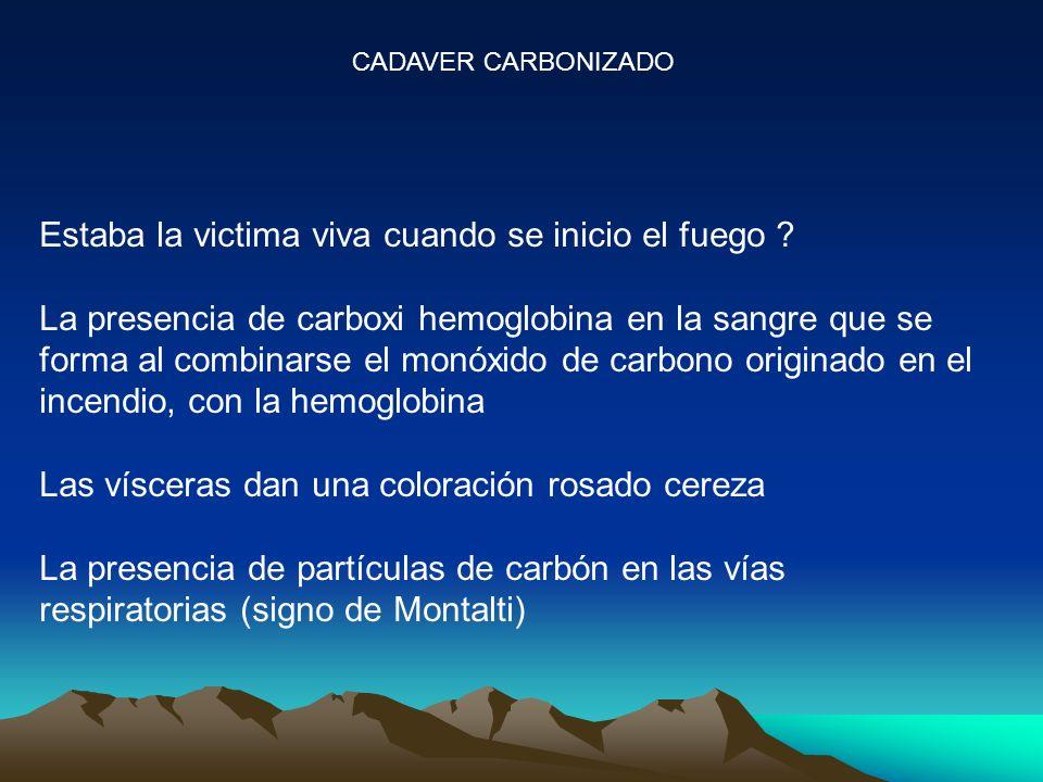 CADAVER CARBONIZADO Estaba la victima viva cuando se inicio el fuego ? La presencia de carboxi hemoglobina en la sangre que se forma al combinarse el