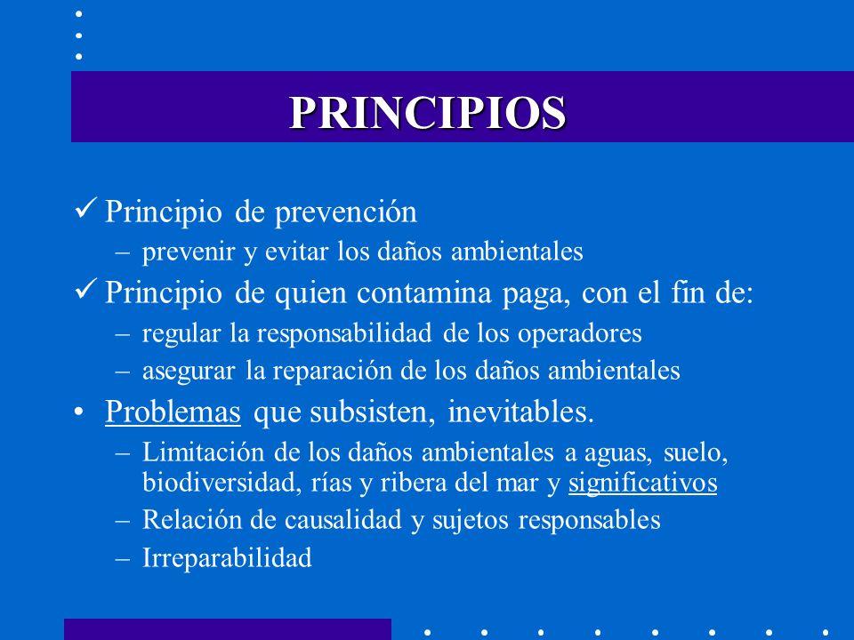 Características de la Ley española Ambiciosa Ley básica.