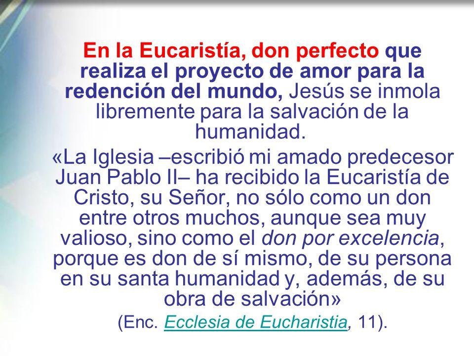 Contemplando el misterio eucarístico, que expresa de manera sublime el don que libremente ha hecho el Padre en la Persona del Hijo Unigénito para la s