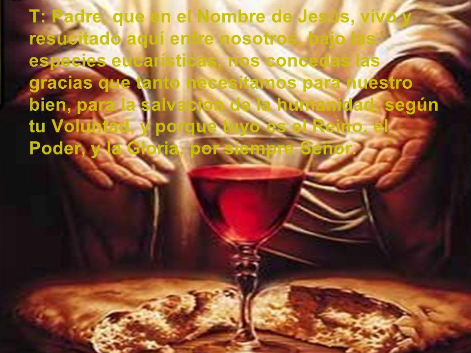 T: Padre, que en el Nombre de Jesús, vivo y resucitado aquí entre nosotros, bajo las especies eucarísticas, nos concedas las gracias que tanto necesit