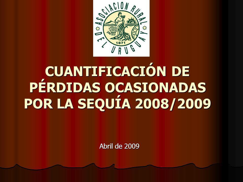 CUANTIFICACIÓN DE PÉRDIDAS OCASIONADAS POR LA SEQUÍA 2008/2009 Abril de 2009