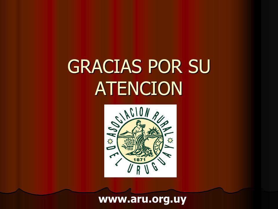 GRACIAS POR SU ATENCION www.aru.org.uy