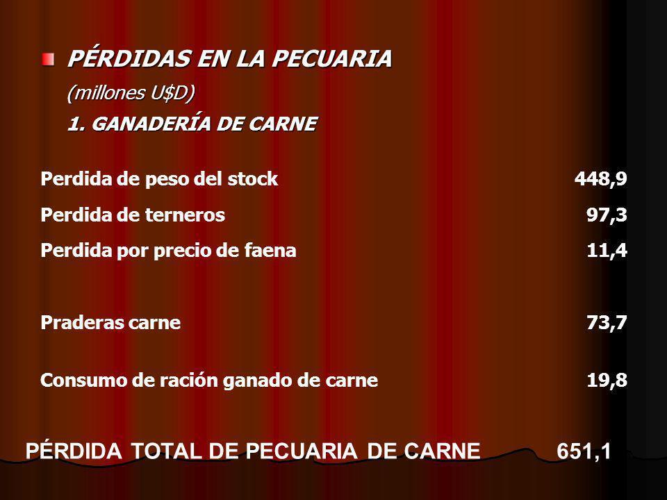 PÉRDIDAS EN LA PECUARIA (millones U$D) 1. GANADERÍA DE CARNE Perdida de peso del stock448,9 Perdida de terneros97,3 Perdida por precio de faena11,4 Pr