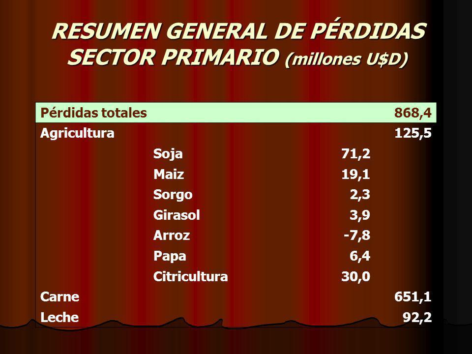 RESUMEN GENERAL DE PÉRDIDAS SECTOR PRIMARIO (millones U$D) Pérdidas totales 868,4 Agricultura 125,5 Soja71,2 Maiz19,1 Sorgo2,3 Girasol3,9 Arroz-7,8 Pa
