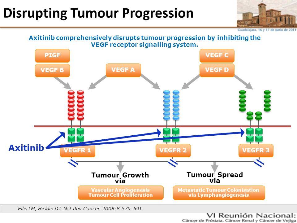 Disrupting Tumour Progression Ellis LM, Hicklin DJ. Nat Rev Cancer. 2008;8:579–591. Metastatic Tumour Colonisation via Lymphangiogenesis Tumour Growth