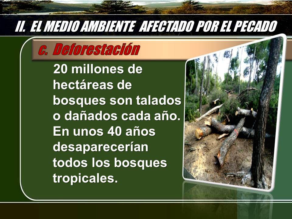 II. EL MEDIO AMBIENTE AFECTADO POR EL PECADO 20 millones de hectáreas de bosques son talados o dañados cada año. En unos 40 años desaparecerían todos