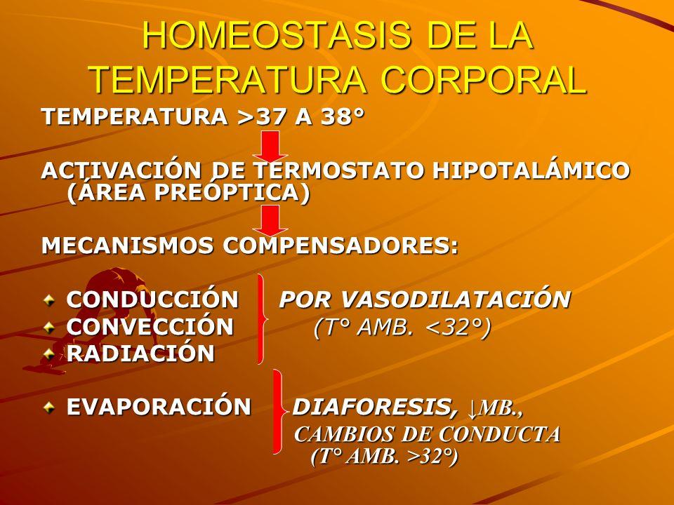 HOMEOSTASIS DE LA TEMPERATURA CORPORAL TEMPERATURA >37 A 38° ACTIVACIÓN DE TERMOSTATO HIPOTALÁMICO (ÁREA PREÓPTICA) MECANISMOS COMPENSADORES: CONDUCCI