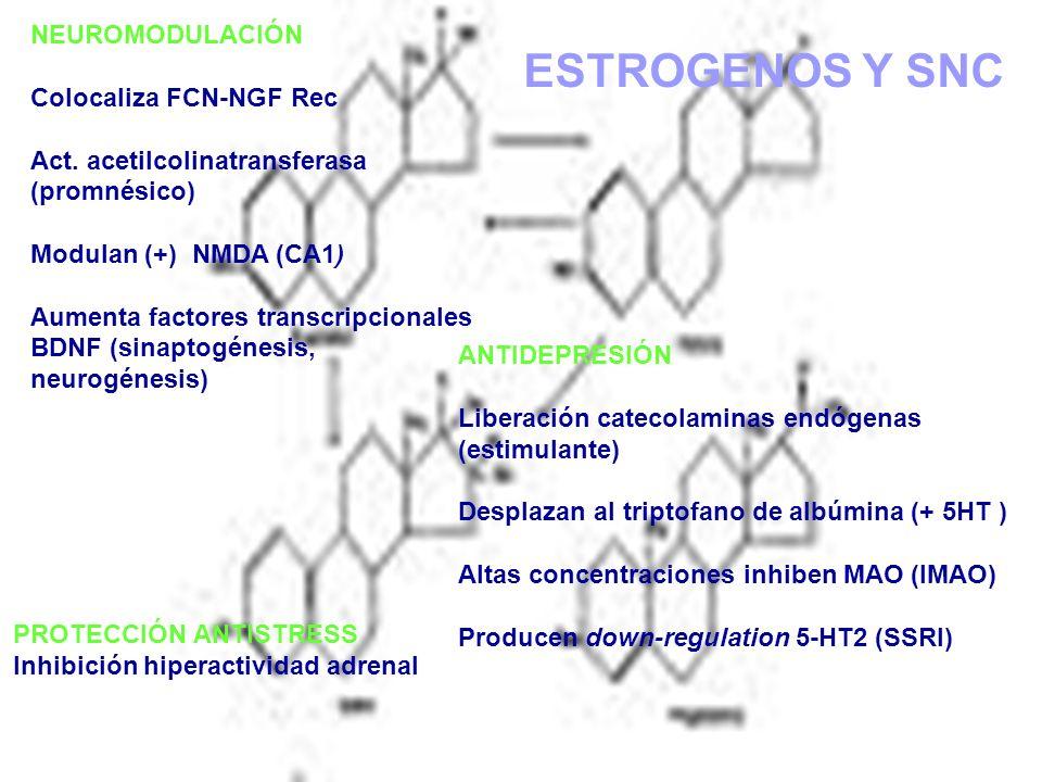 DEPRESIÓN EN EMBARAZO: Impacto Biológico del NO Tratamiento Retraso o defecto en la maduración de las membranas por aumento del stress oxidativo.