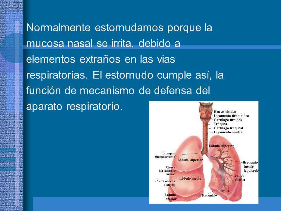 Causas del estornudo Existen dos causas principales del estornudo, las cuales son: La presencia de un irritante en la nariz (p.e.
