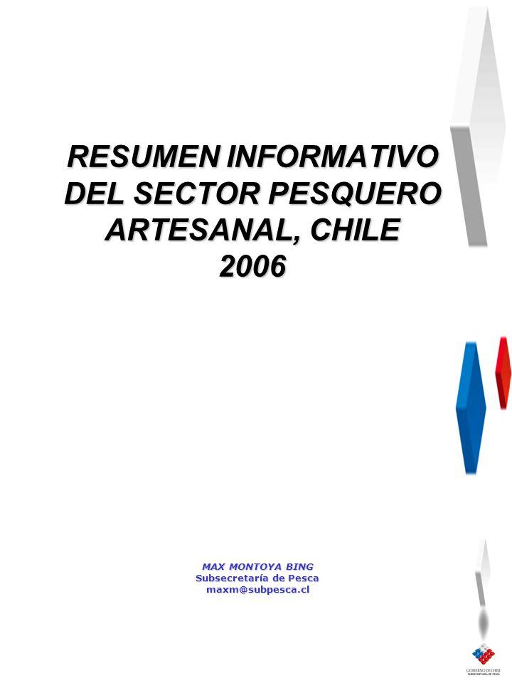 MAX MONTOYA BING Subsecretaría de Pesca maxm@subpesca.cl RESUMEN INFORMATIVO DEL SECTOR PESQUERO ARTESANAL, CHILE 2006