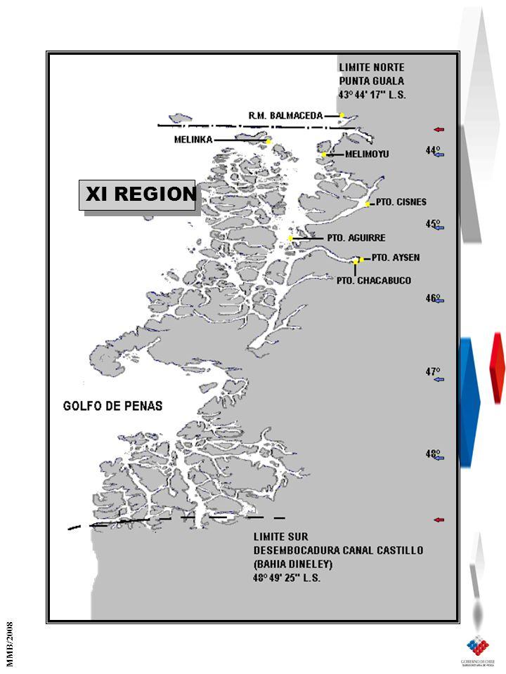 XI REGION MMB/2008