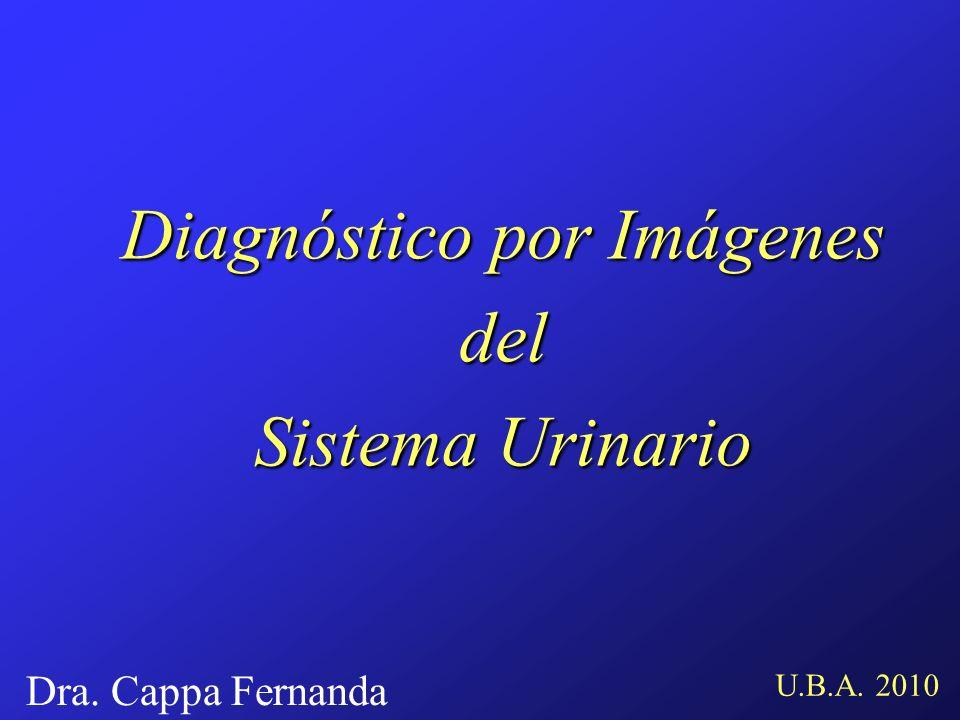 Diagnóstico por Imágenes del Sistema Urinario U.B.A. 2010 Dra. Cappa Fernanda