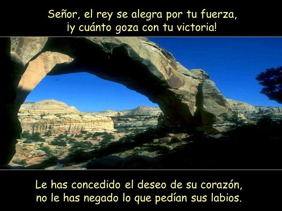 Señor, el rey se alegra por tu fuerza, ¡y cuánto goza con tu victoria.