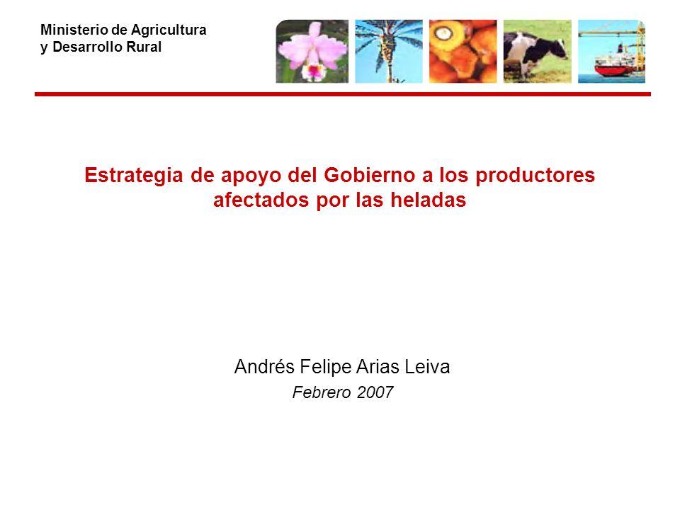 Ministerio de Agricultura y Desarrollo Rural Estrategia de apoyo del Gobierno a los productores afectados por las heladas Andrés Felipe Arias Leiva Febrero 2007