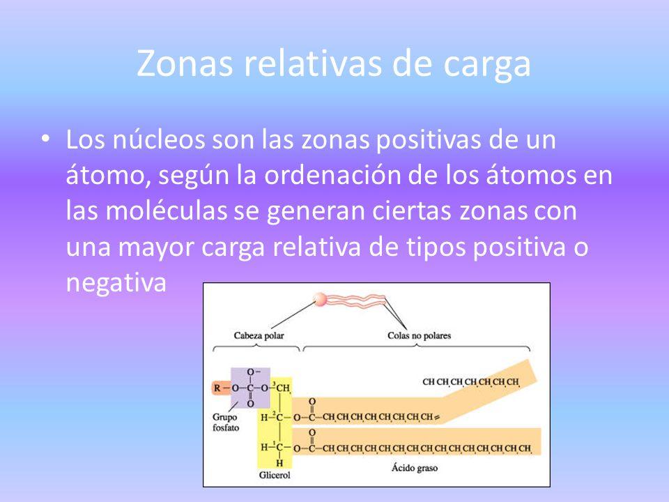 Zonas relativas de carga Los núcleos son las zonas positivas de un átomo, según la ordenación de los átomos en las moléculas se generan ciertas zonas