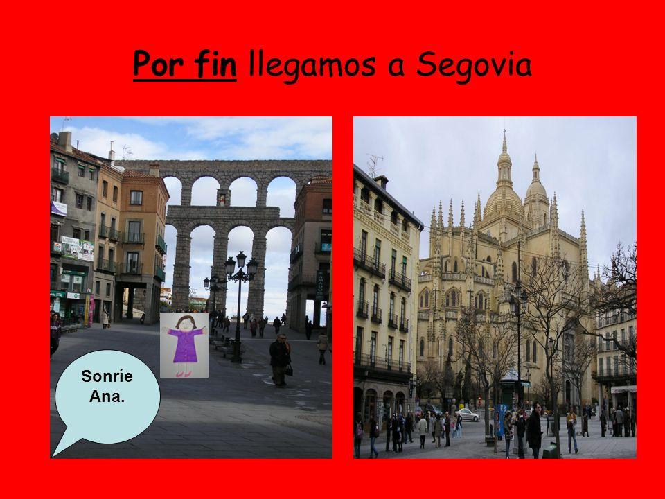 Por fin llegamos a Segovia Sonríe Ana.