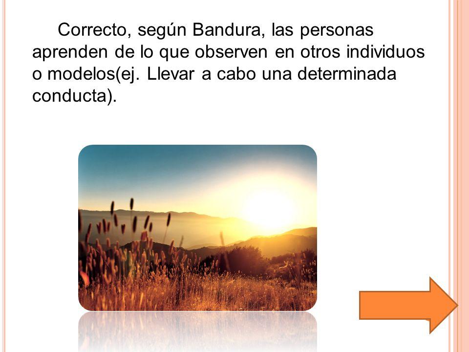 Correcto, según Bandura, las personas aprenden de lo que observen en otros individuos o modelos(ej. Llevar a cabo una determinada conducta).