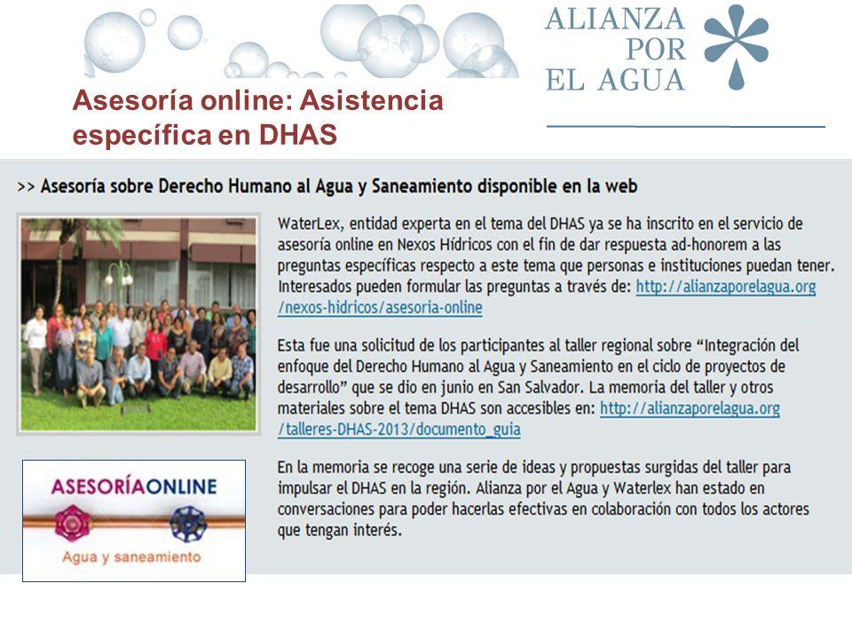 Asesoría online: Asistencia específica en DHAS