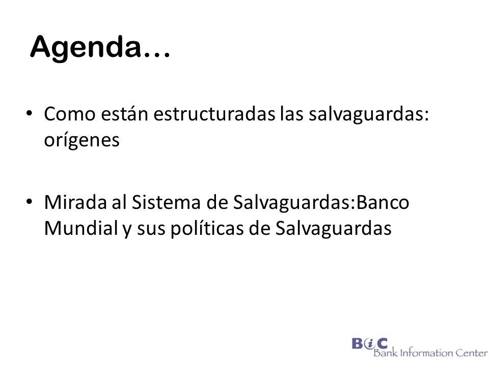 Agenda… Como están estructuradas las salvaguardas: orígenes Mirada al Sistema de Salvaguardas:Banco Mundial y sus políticas de Salvaguardas