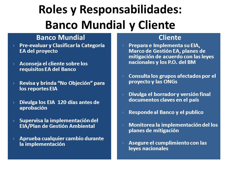 Banco Mundial Pre-evaluar y Clasificar la Categoría EA del proyecto Aconseja el cliente sobre los requisitos EA del Banco Revisa y brinda No Objeción
