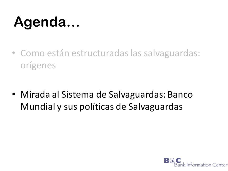 Agenda… Como están estructuradas las salvaguardas: orígenes Mirada al Sistema de Salvaguardas: Banco Mundial y sus políticas de Salvaguardas
