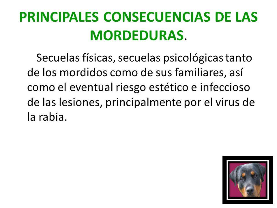 PRINCIPALES CONSECUENCIAS DE LAS MORDEDURAS. Secuelas físicas, secuelas psicológicas tanto de los mordidos como de sus familiares, así como el eventua