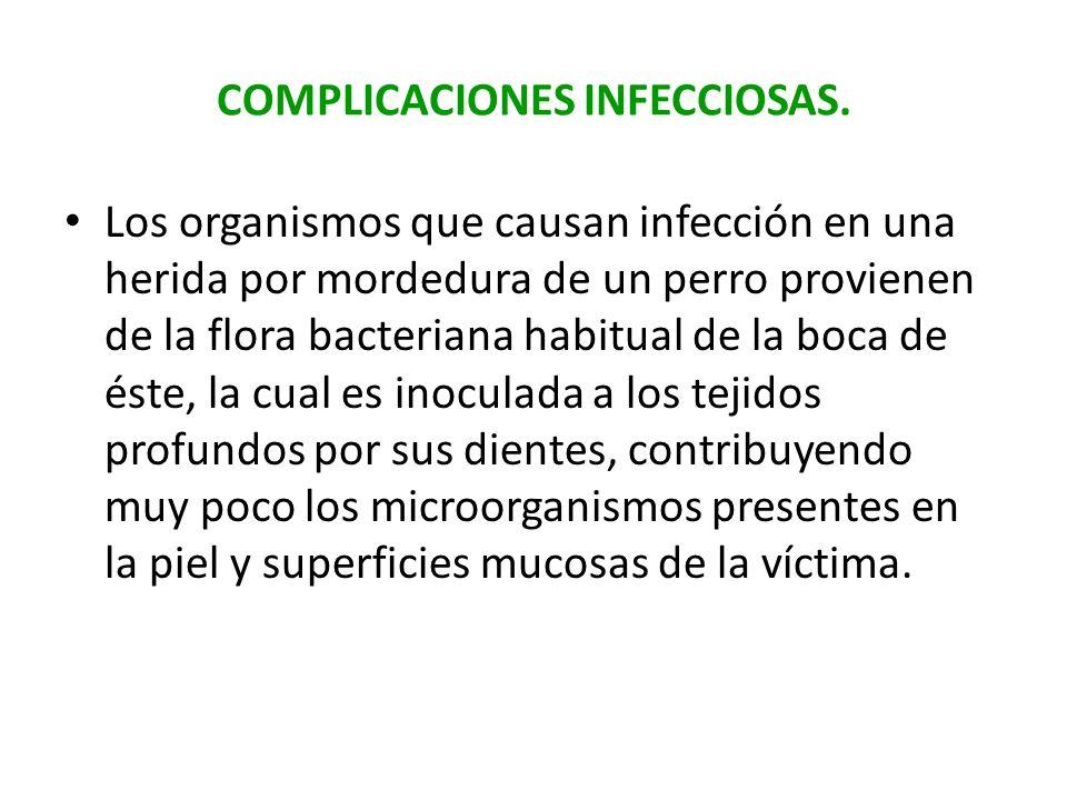 COMPLICACIONES INFECCIOSAS. Los organismos que causan infección en una herida por mordedura de un perro provienen de la flora bacteriana habitual de l