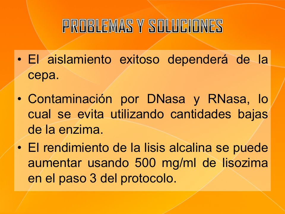 El aislamiento exitoso dependerá de la cepa. Contaminación por DNasa y RNasa, lo cual se evita utilizando cantidades bajas de la enzima. El rendimient