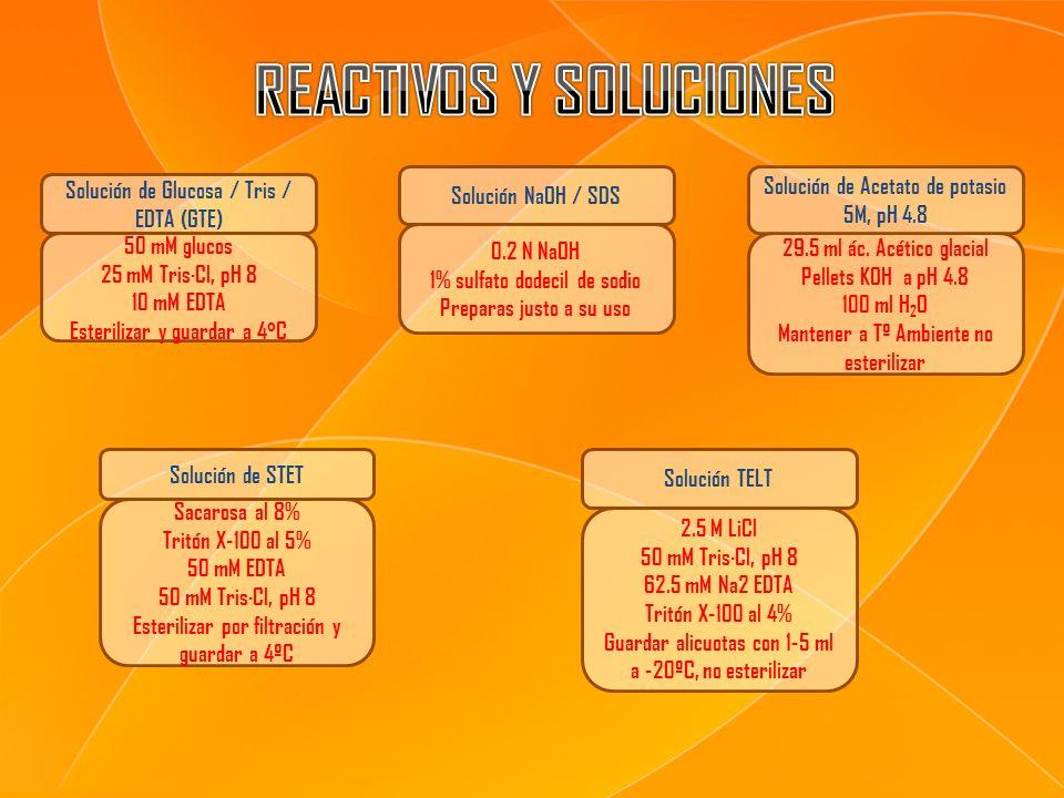 50 mM glucos 25 mM Tris·Cl, pH 8 10 mM EDTA Esterilizar y guardar a 4 º C 0.2 N NaOH 1% sulfato dodecil de sodio Preparas justo a su uso 29.5 ml ác. A