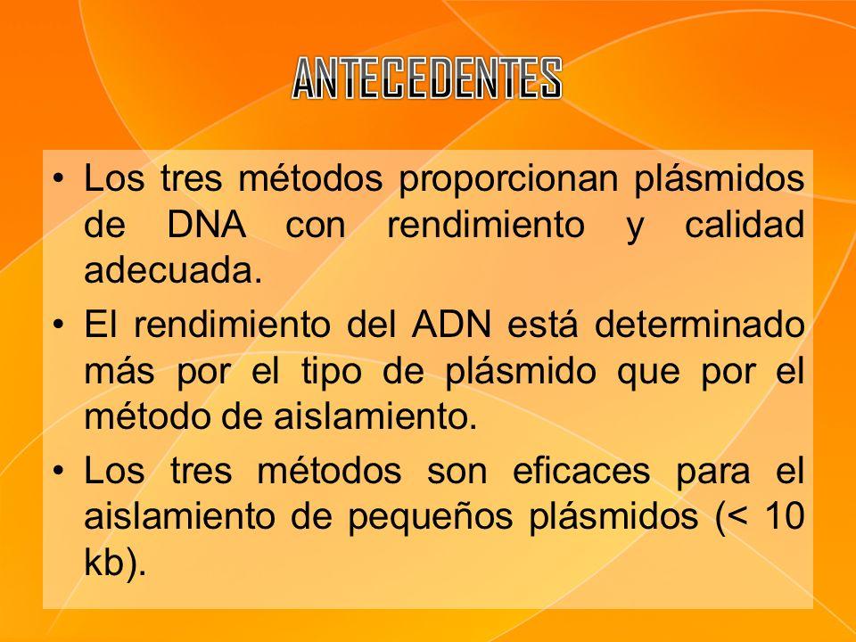 Los tres métodos proporcionan plásmidos de DNA con rendimiento y calidad adecuada. El rendimiento del ADN está determinado más por el tipo de plásmido