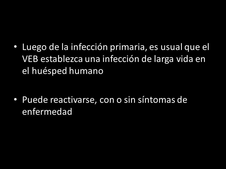 Luego de la infección primaria, es usual que el VEB establezca una infección de larga vida en el huésped humano Puede reactivarse, con o sin síntomas