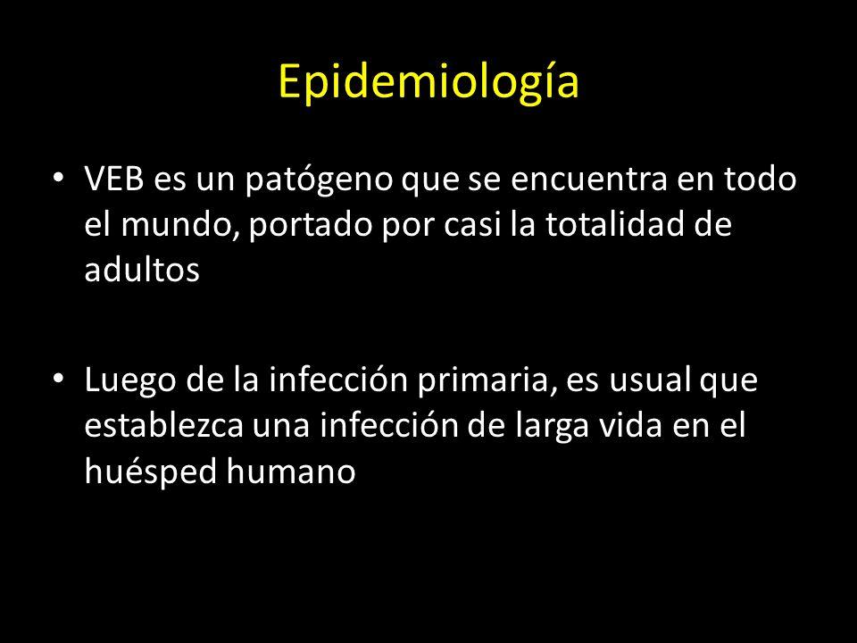 Epidemiología VEB es un patógeno que se encuentra en todo el mundo, portado por casi la totalidad de adultos Luego de la infección primaria, es usual