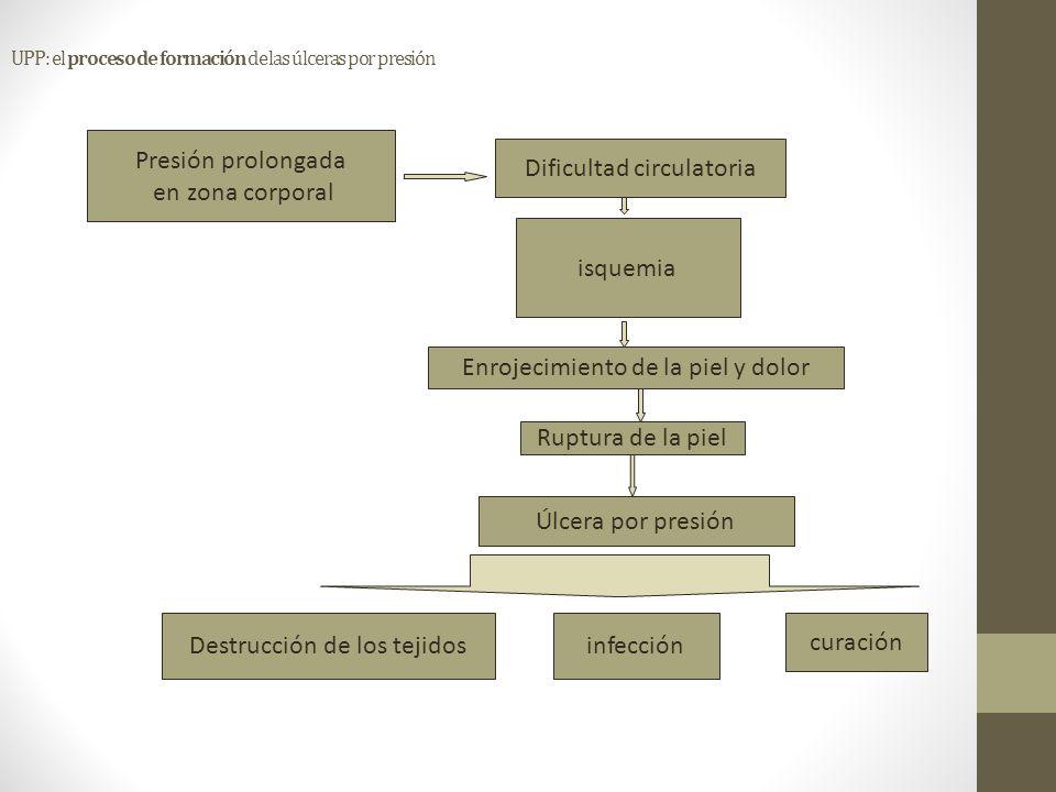 UPP: el proceso de formación de las úlceras por presión Presión prolongada en zona corporal Dificultad circulatoria isquemia Enrojecimiento de la piel