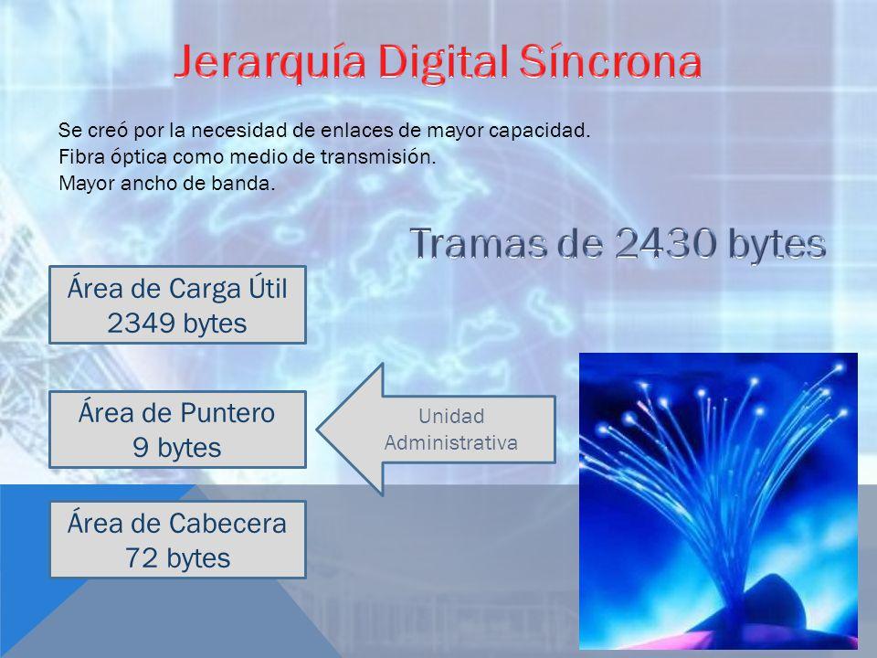 Se creó por la necesidad de enlaces de mayor capacidad. Fibra óptica como medio de transmisión. Mayor ancho de banda. Área de Carga Útil 2349 bytes Ár