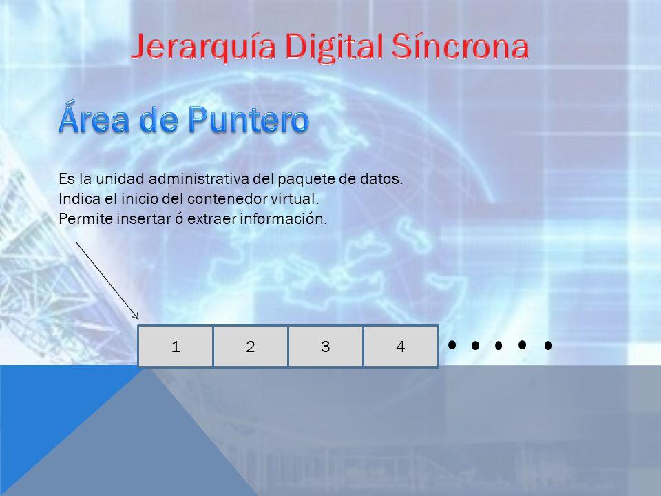 1423 Es la unidad administrativa del paquete de datos. Indica el inicio del contenedor virtual. Permite insertar ó extraer información.